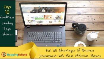 Effective-wordpress landing-page themes