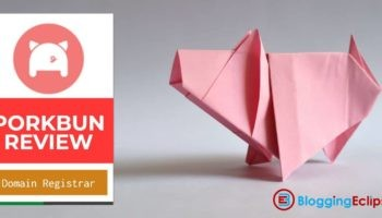 Porkbun Review: World's Renowned Domain Registrar with amazing prices 1