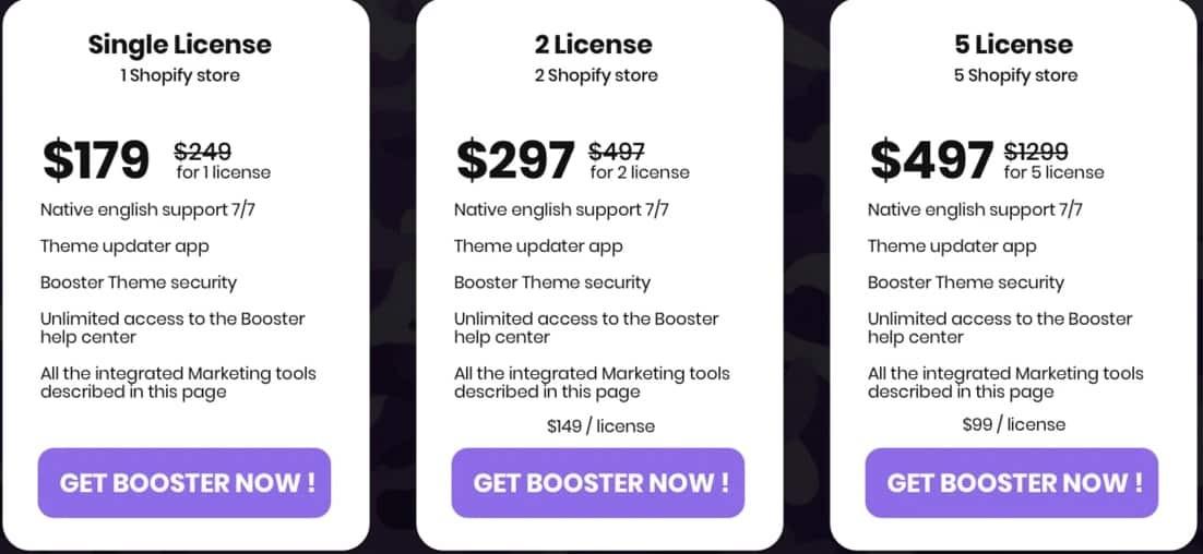 Booster Theme Pricing Plan