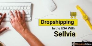 Dropshipping in the USA with Sellvia